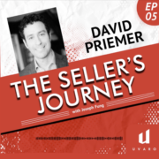 Sellers Journey - David Priemer